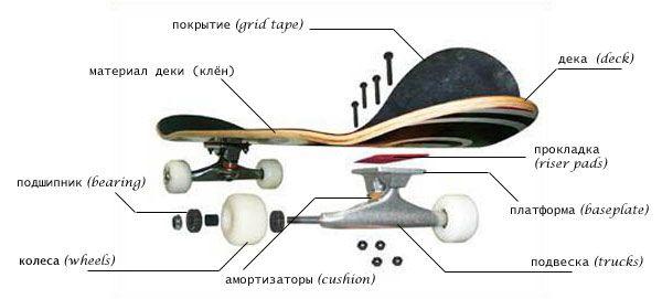 Устройство скейтборда